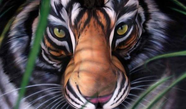 Craig Tracy - Tiger