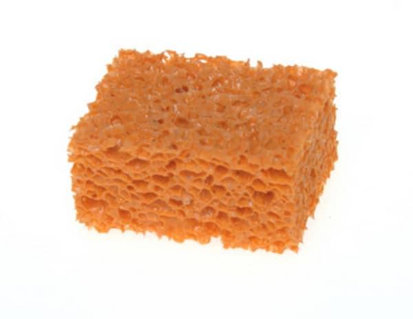 orangestipplesponge