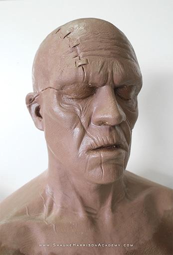 Shaune Sculpt Head