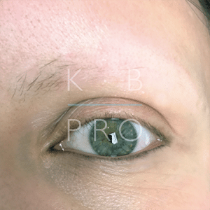 brows_advancedRealism-sarahC_before