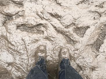 Kate more mud