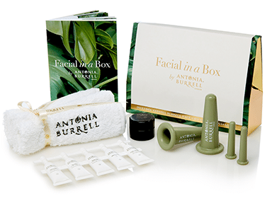 Facial in a Box by Antonia Burrell